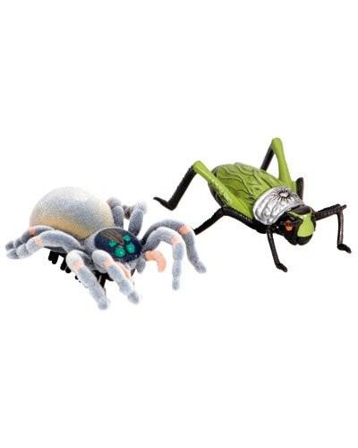 Insectes Guerriers ''Legend Of Nara''