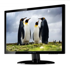 Moniteur 19'' LED Hannspree HE195ANB