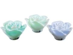 Roses flottantes à LED