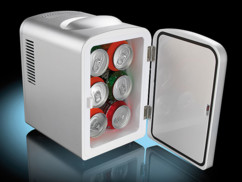 Mini réfrigérateur 2 en 1 avec prise 12 / 230 V - Gris (reconditionné)
