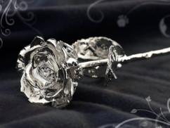 Rose éternelle - Argentée à l'argent 999/1000