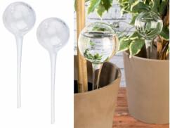 Set de 2 doseurs d'irrigation en verre  - Ø 85 mm