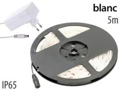 Bande à LED 5 mètres - blanc + adaptateur secteur