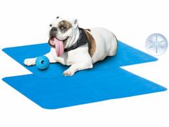 2 tapis rafraîchissants pour chiens et chats 65x 50cm