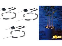 3 dispositifs d'éclairage LED solaires 360° pour plantes