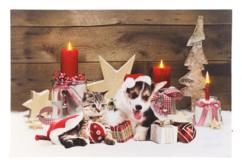 Tableau de Noël à 3LED avec des bébés animaux 60 x 40 cm