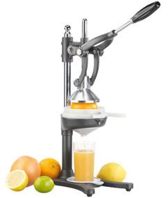 presse agrumes à levier pour agrumes ornages pamplemousses citrons grenades avec éléments amovibles rosenstein