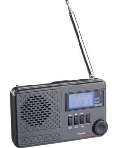 Récepteur radio mondial ''WWR-100.mp3''